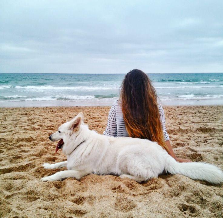 #calm #relax #dog