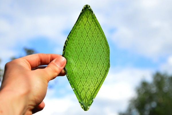 Synthetic Leaf