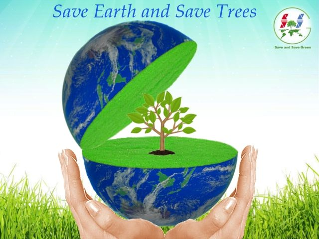 Essay on tree plantation