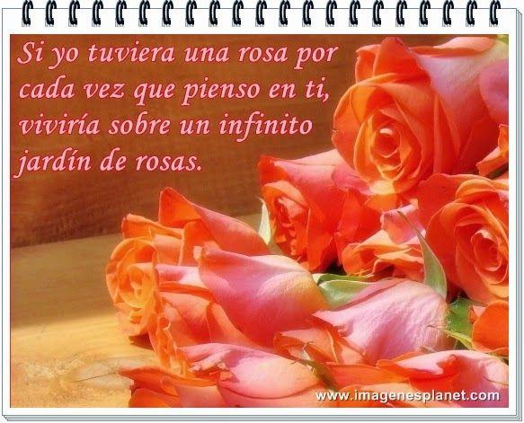 Tarjetas, Postales, Fotos e Imágenes de lindas rosas para compartir en Facebook