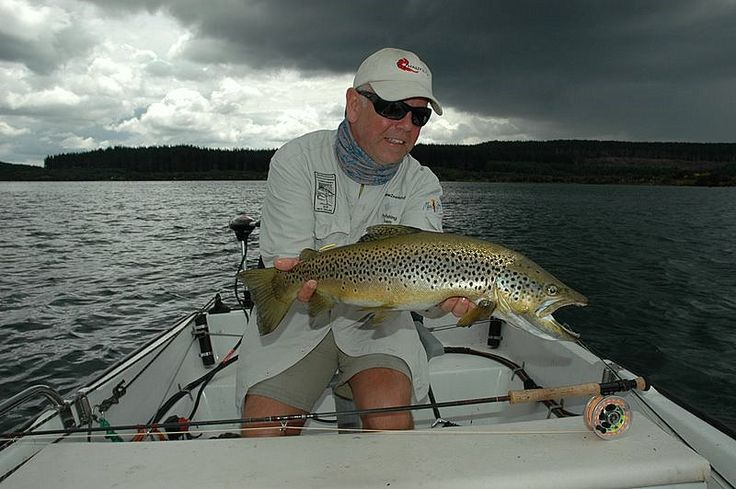 A stunning Brown trout caught at dusk on a Taupo stillwater.
