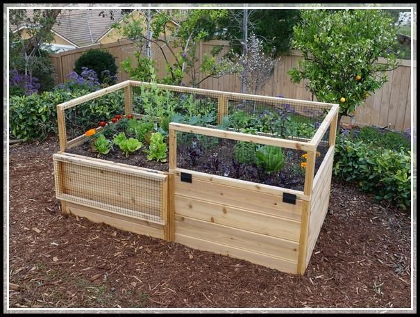 Smarten The Horticulture With One Of These Useful Tips Vegetable