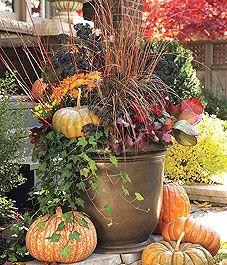 Modern Classic: A Warm Fall Container - Canadian Gardening