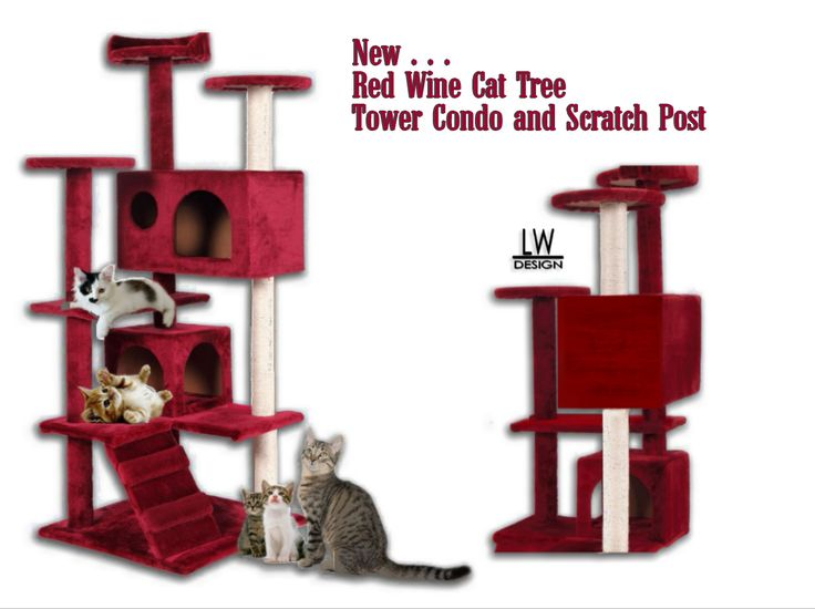 New Red Wine Cat Tree Tower Condo Furniture Scratch Post for Kitty's  | Home