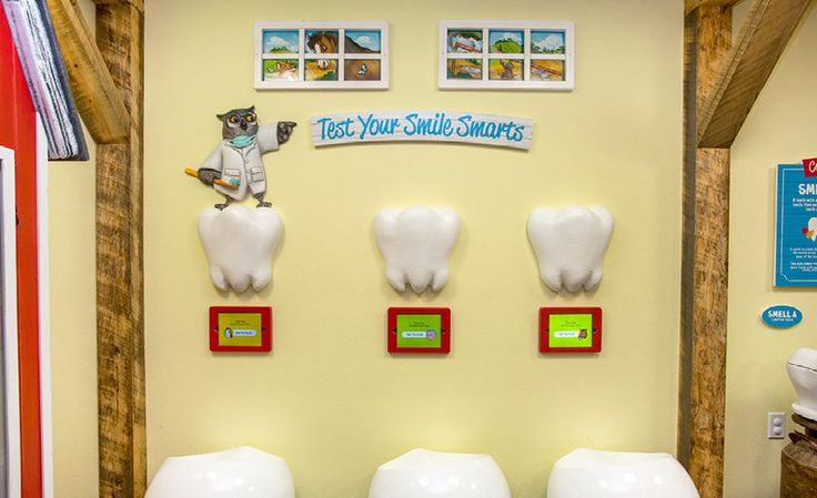 Safari Themed Pediatric dental office with touch screen game units ...