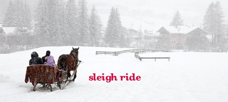 Sleigh Ride by DavidsTea. Mack's favourite, and one of mine as well. Must always have on hand to share with friends.