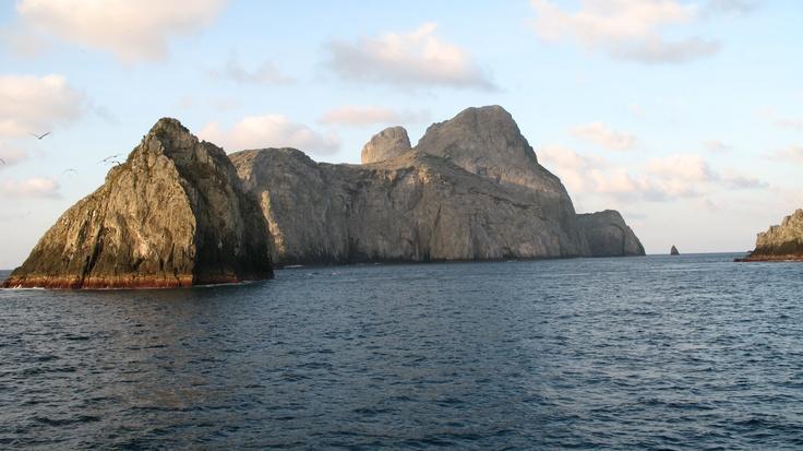 A plus de 300 km du littoral, se trouve l'îlot de Malpelo, un rocher qui émerge de l'océan, entouré d'une étonnante vie marine. C'est le 2ème spot du monde pour la plongée sous-marine.