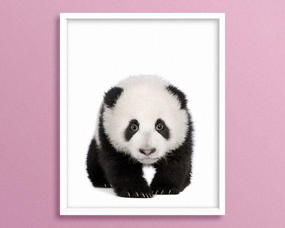 Panda Cub Panda Panda Bear Panda Printable Panda Art by Blckd