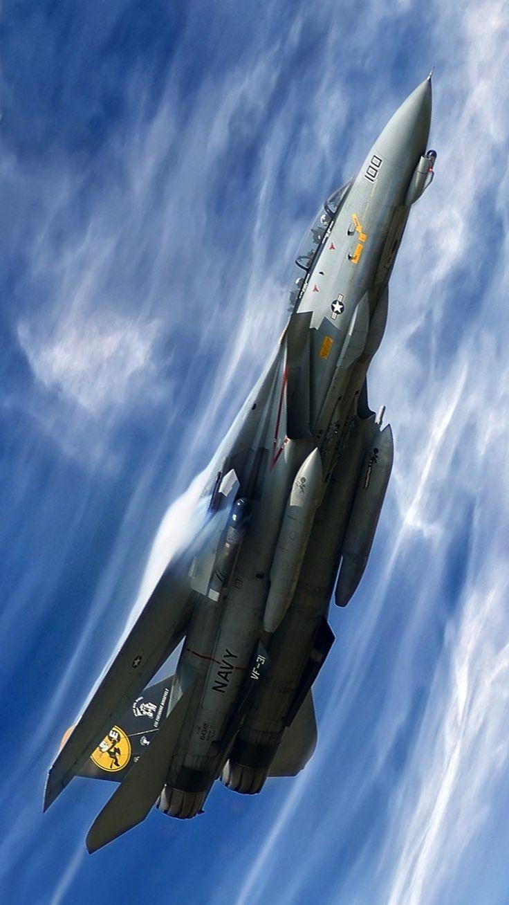 F-14 Tomcat.