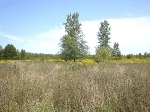 Residential/Commercial land for sale in Minnesota