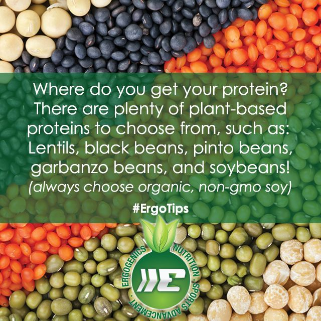 Protein is NOT a problem for plant-based diets! Check out today's #ErgoTips!