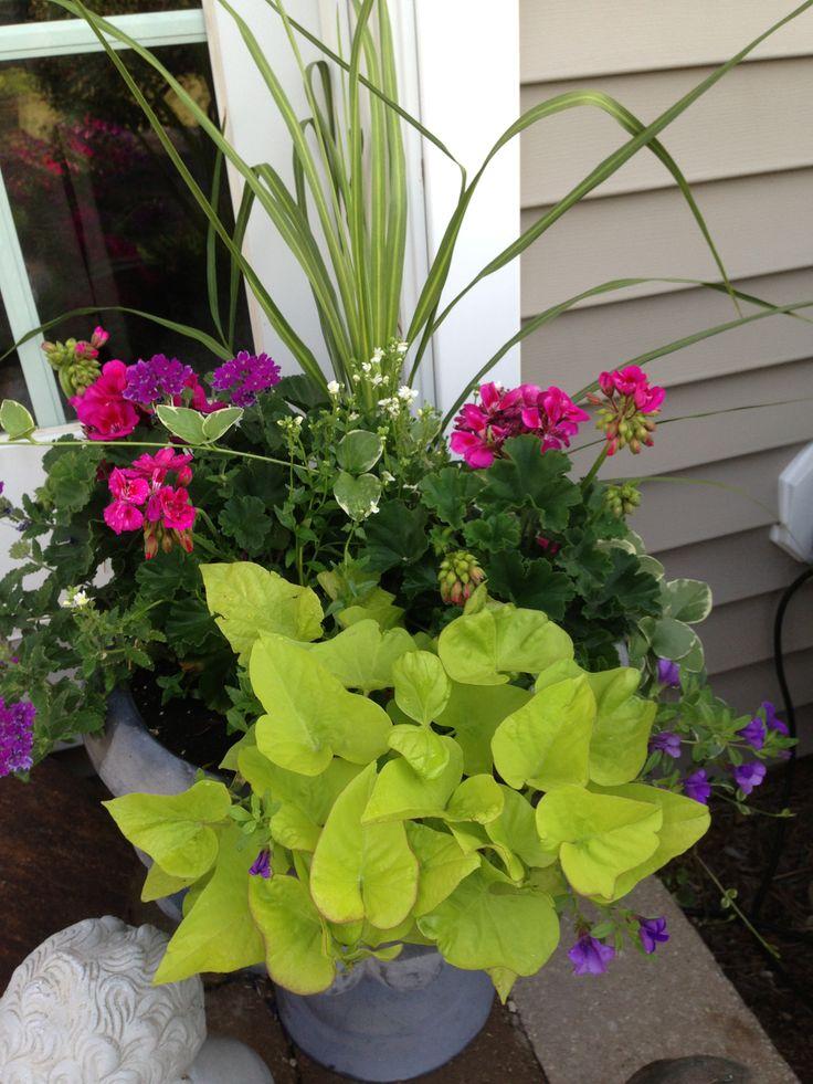 Shade Garden Landscaping House