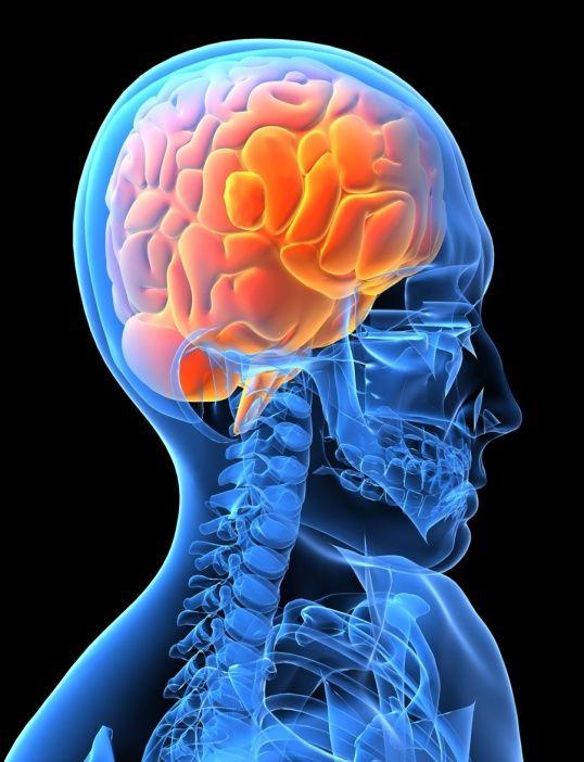 http://www.pirasan.ro/noutati/accidentul_vascular_cerebral_AVC.html