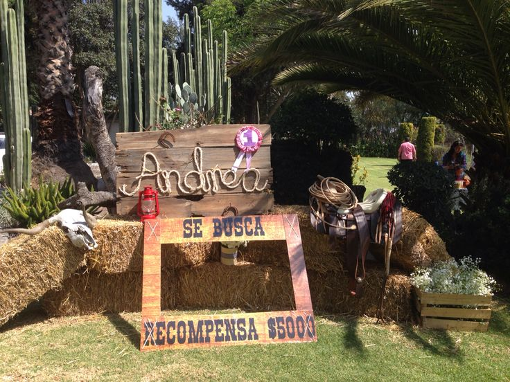 Cowgirl Party , fiesta vaquera | Cowgirl Party !! Fiesta
