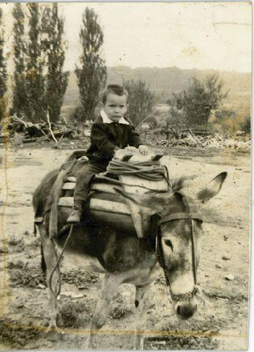 Riding a mule - Μουλαρομεταφορά