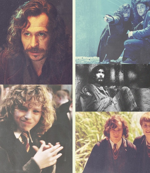 the life of Sirius Black