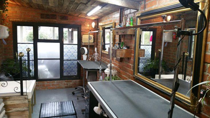Grooming Shop Floor Plans: 500 Best Grooming Business Decor Images On Pinterest