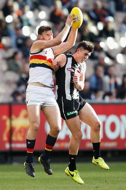 AFL 2017 Round 19 - Collingwood v Adelaide - AFL.com.au