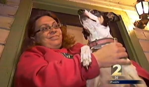 A young girl in suburban Atlanta was walking her dog Thursday morning when a strange man got out of a pickup truck and grabbed her wrist. Thanks to her tiny rat terrier mix, who bit the man's ankles, she was able to escape.