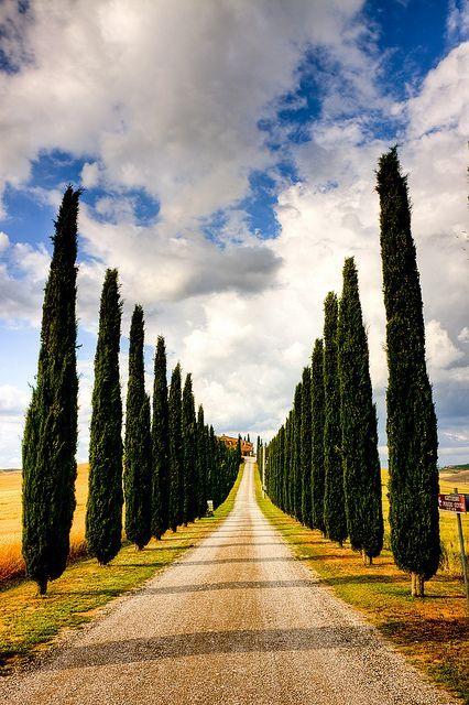 Stunning Picz: Tuscany, Italy
