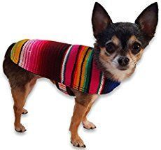 There are lots of People now who wants to buy or adopt dogs. One… - https://sorihe.com/test/2018/03/12/there-are-lots-of-people-now-who-wants-to-buy-or-adopt-dogs-one/ #Dresses #Blouses&Shirts #Hoodies&Sweatshirts #Sweaters #Jackets&Coats #Accessories #Bottoms #Skirts #Pants&Capris #Leggings #Jeans #Shorts #Rompers #Tops&Tees #T-Shirts #Camis #TankTops #Jumpsuits #Bodysuits #Bags
