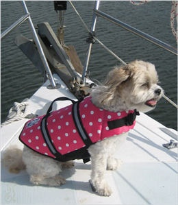 go boating or swimming together! fashionable dog life jacket keeps them safe. includes handle and reflector strips.