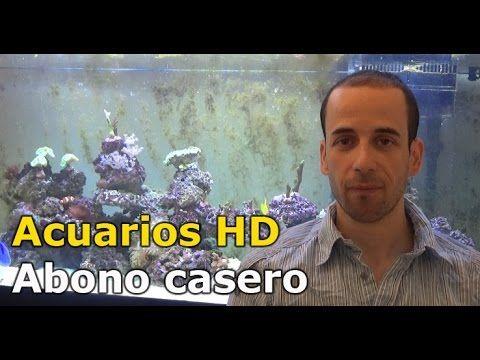 COMO HACER ABONO CASERO PARA PLANTAS ACUATICAS : SULFATO DE POTASIO - YouTube