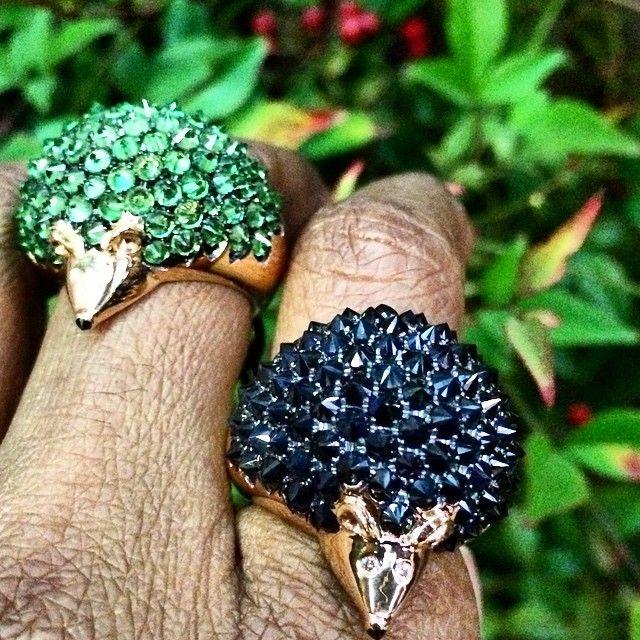 Hedgehog rings Roberto coin