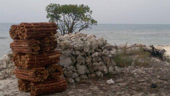Pantai Tunda