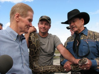 Sen. Bill Nelson doesn't get his python, but he bags plenty of media attention