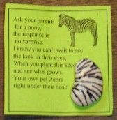Pet Zebra Seed SWAPS: Pet Zebras, Pet Seeds