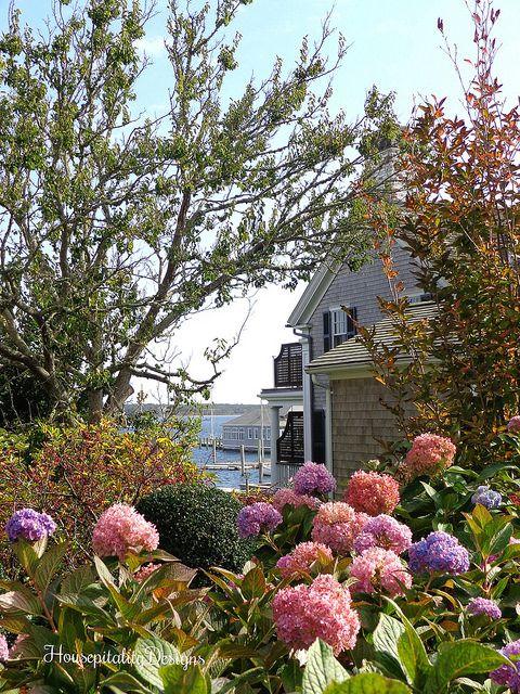 Martha's Vineyard Hydrangea Garden Water View