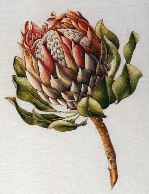 Protea embroidery by Trish Burr
