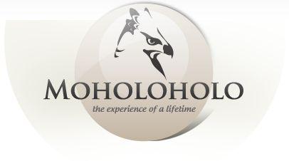 Moholoholo Wildlife Rehabilitation Centre - South Africa #African Wildlife #South Africa