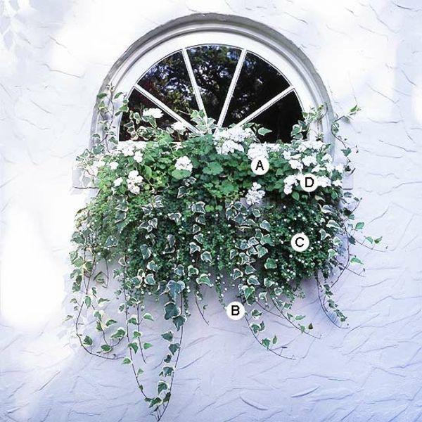 Die 25+ Besten Ideen Zu Blumenkästen Auf Pinterest | Balkonkästen ... Blumen Arrangement Im Blumenkasten Ideen