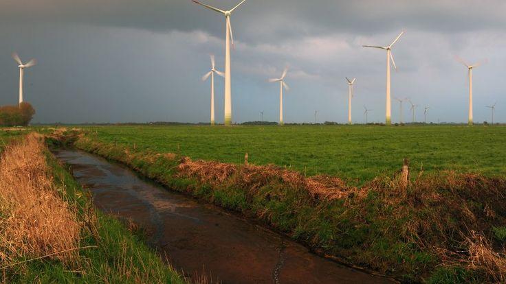 Windpark in Niedersachsen (Archiv)