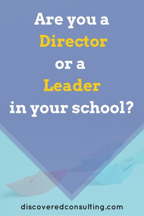 Are you a Director or a Leader in your early childhood school? — The DiscoverED Consulting Blog