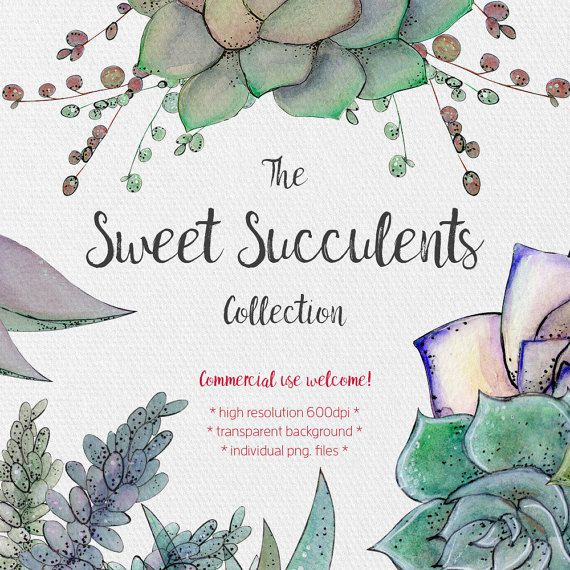 Succulents Clipart  Sweet Succulents Collection  by JessicaOxleyAI
