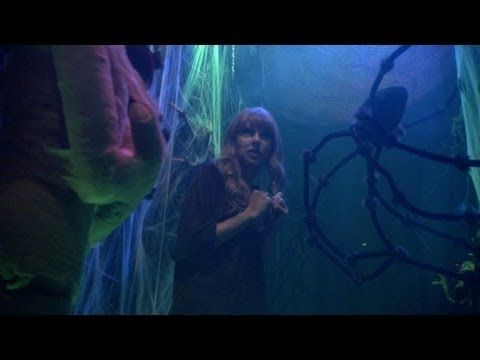 Taylor Swift in the Haunted Hallway! I cried. I was laughing so hard that I was pretty much balling. Guaranteed to improve your day.