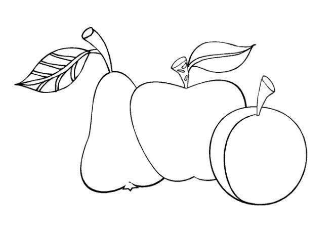 Mejores 10 imágenes de manzanas verdes en Pinterest   Pintura sobre ...