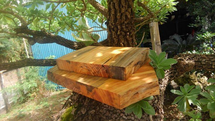 樹齢60年の琉球松で作られたまな板。琉球松のテーブルも有ります。もちろん非売品です。