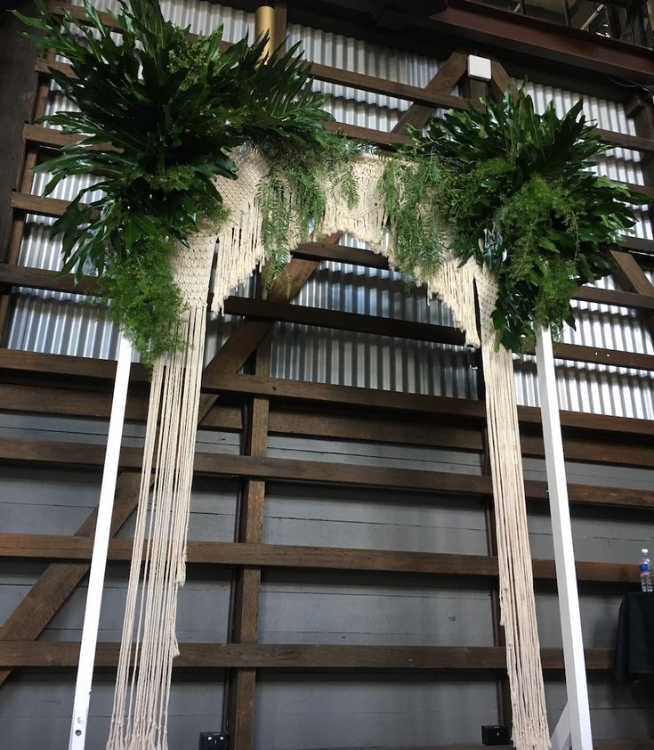 Wedding Arch for Ovolo Photoshoot