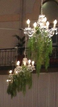 Greenery draped Chandeliers