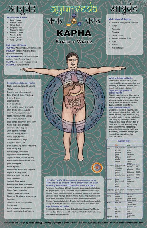 KAPHA poster gives basic descriptions of the following ayurvedic concepts: 1. Qualities of the Dosha. 2. Body type description (including time of day, season etc.) 3. Sub types. 4. Main sites of Dosha. 5. What imbalances the Dosha. 6. Manifestations of imbalance. 7. How to treat. 8. Herbs for Dosha. 9. Yoga asanas.