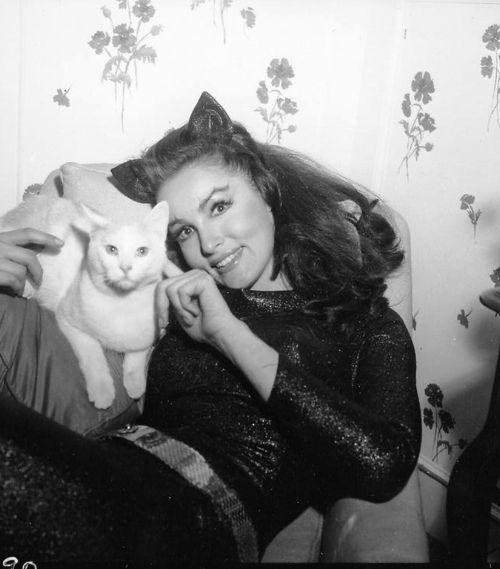 {Catwoman & her kitty} Julie Newmar having some Batman downtime, playing with a kittycat. meow