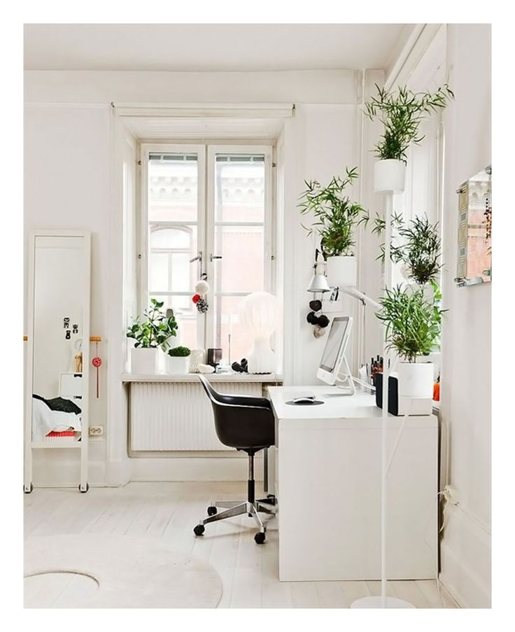Peaceful Home Office Space With Classic White Desk And Green Airy Plants