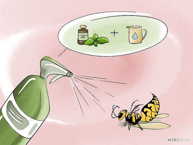 THIS WORKS!!!  Just killed a HUGE wasp flying around my bathroom!   Make a natural insecticide with peppermint oil. Mix 2 cups (500 ml) of water with 30 drops of peppermint essential oil and 2 Tbsp (30 ml) of dish soap in a spray bottle. Spray this solution on wasps and nests.