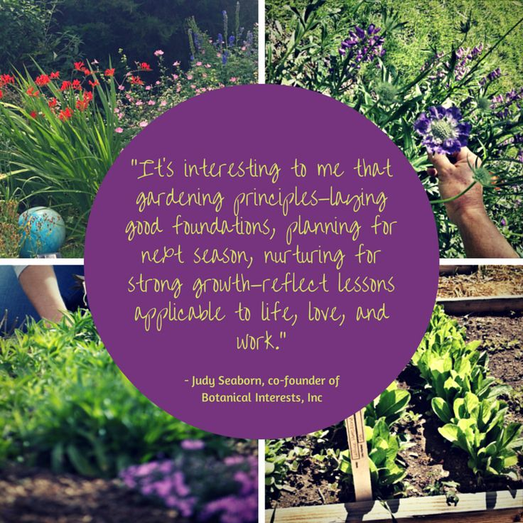 17 Best Images About Garden Quotes On Pinterest Gardens