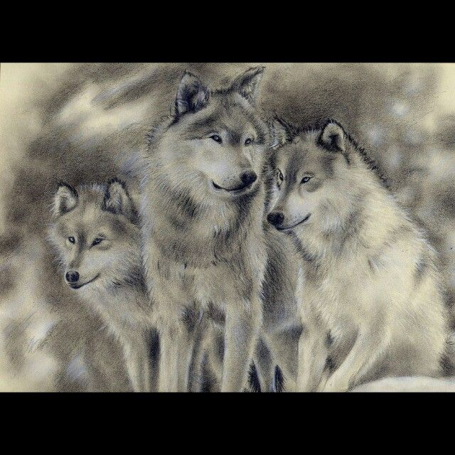 тату волка и волчат картинки подходящие