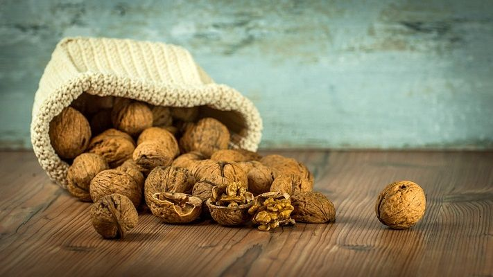 Walnut Nut Suppliers